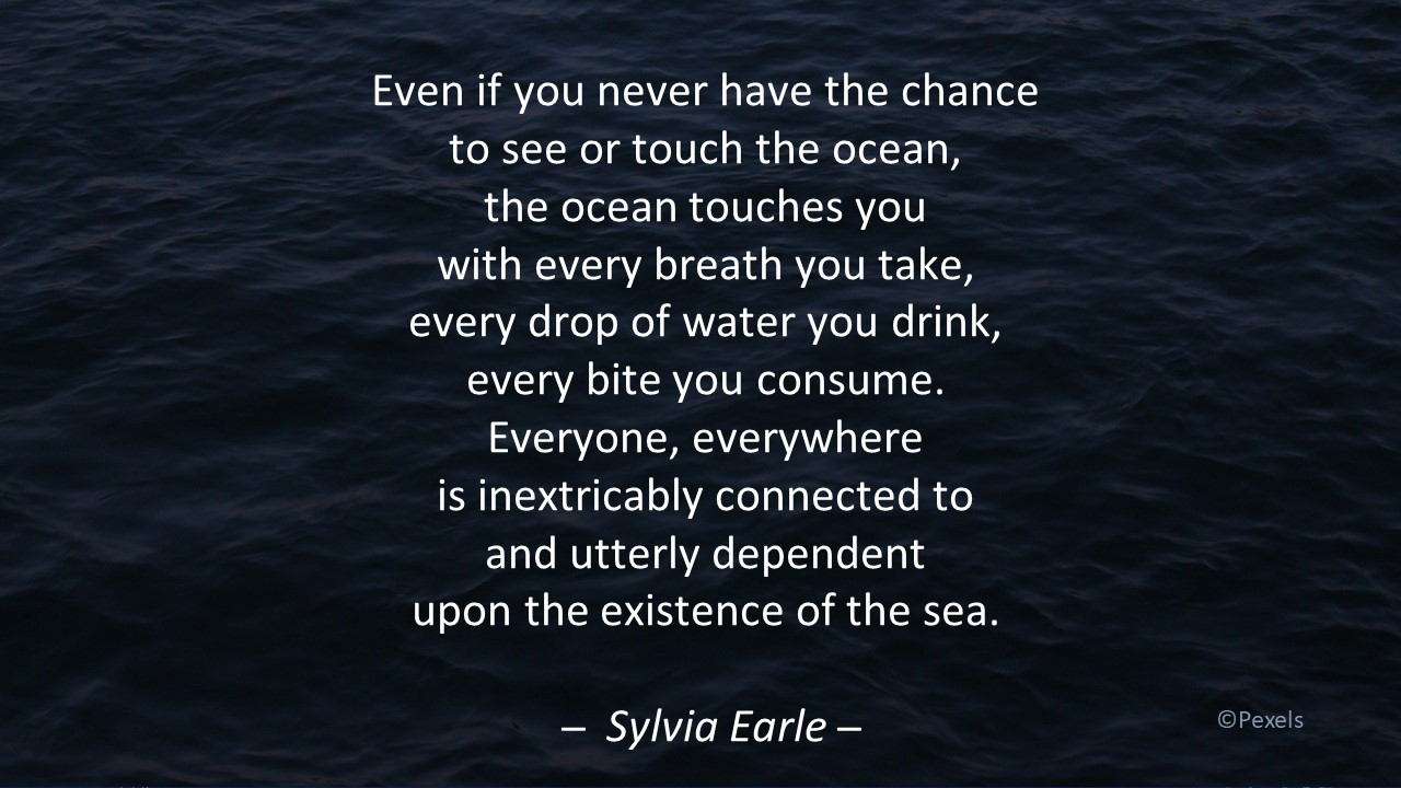 Sylvia Earle quote